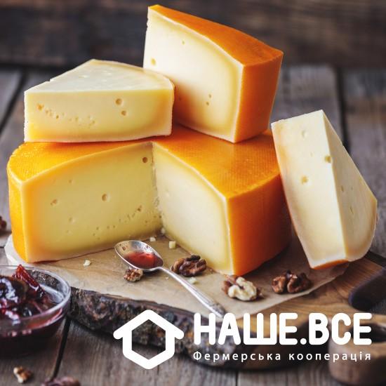 Сыр Гауда молодой коровий (1 мес.) от Валерия Колоши
