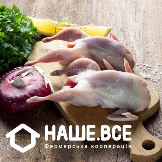 Тушки молодых перепелов Эстонской породы (охлажденные) (2 кг) от Татьяны Пантелеймоновой