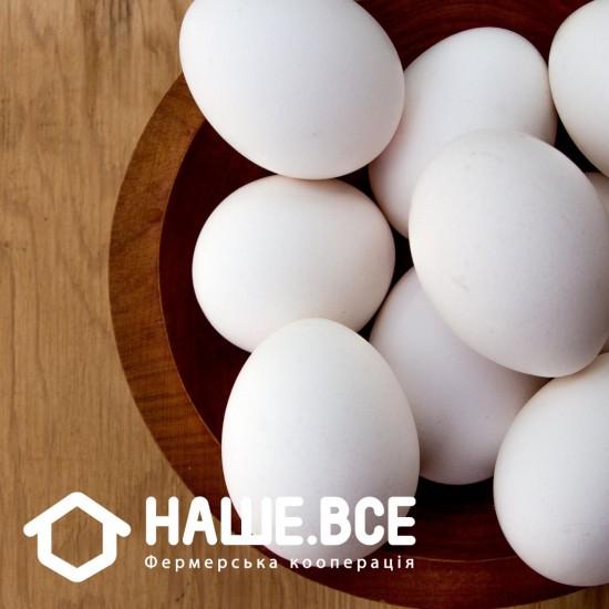 Яйця курячі домашні від Олени Бойченко, 10шт