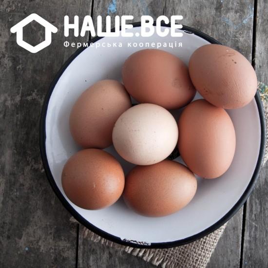 Яйца куриные от Иванкова, 10шт