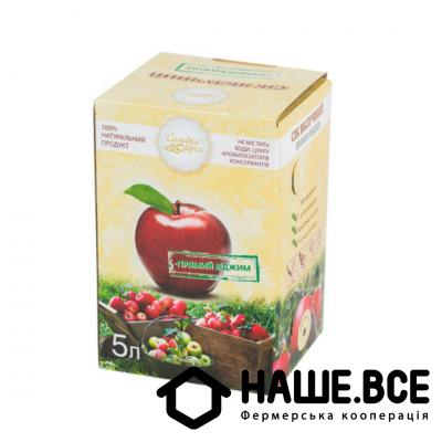 Купить - Сік яблучний 5л ТМ