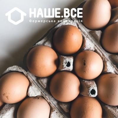 Яйца куриные свободного выгула от Татьяны Яблонской, 10шт